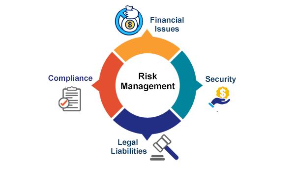 erp financial risk management