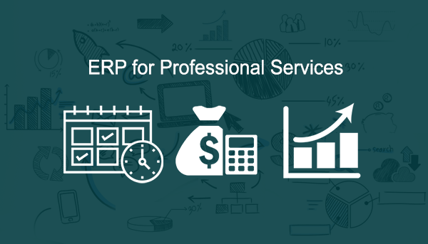 erp for professional services