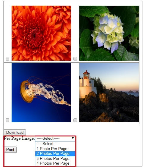PerPage_Image