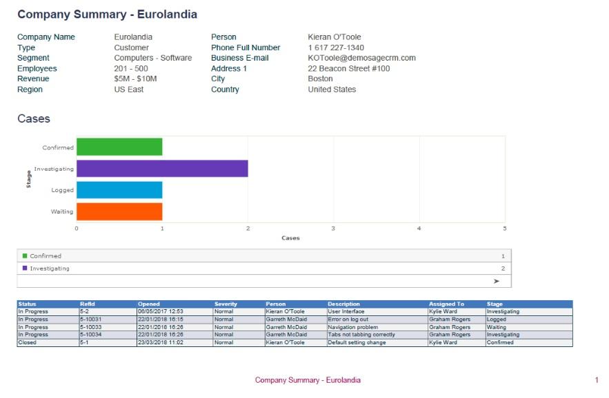 Customized Company Summary Report