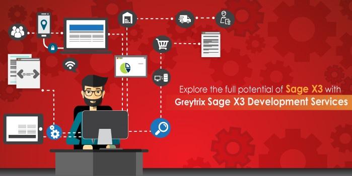 sage x3 development services