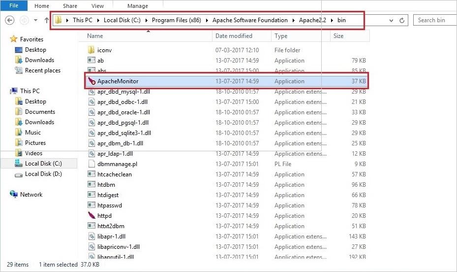 Apache Service with binary files