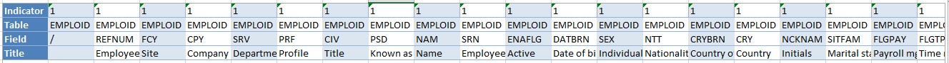 Formatted Excel file