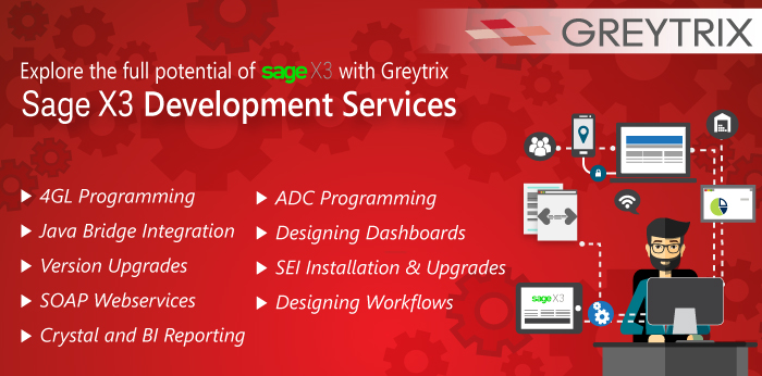 sage x3 development services