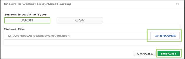 Group.Json-Import