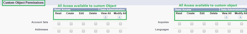 Custom Object Permission