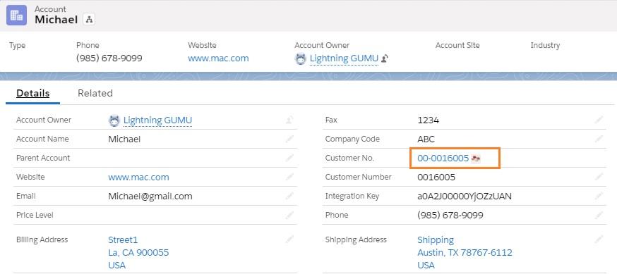 Sage Customer No in Salesforce