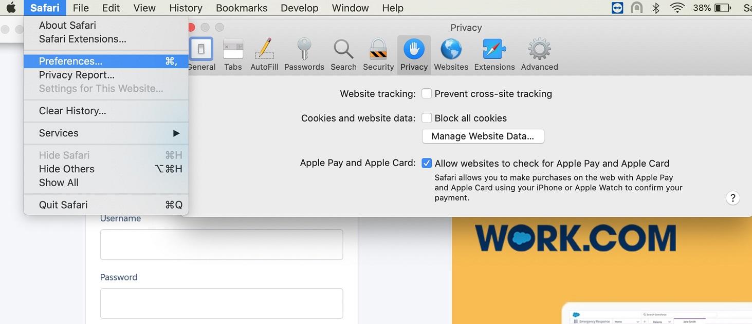 Safari Browser Settings