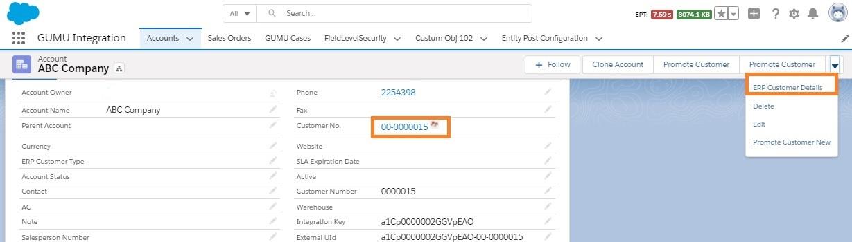 ERP Customer Details