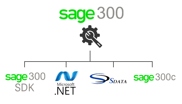 sage 300 erp customization