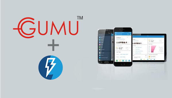 GUMU Integration salesforce