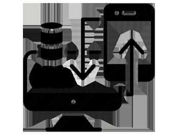 Sage CRM development Services