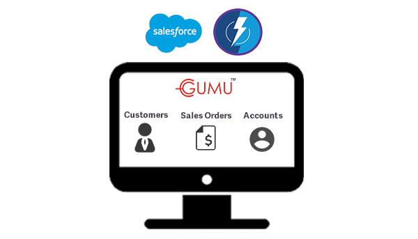salesforce integration lightning