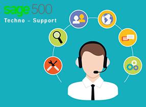 Sage 500 Techno functionality