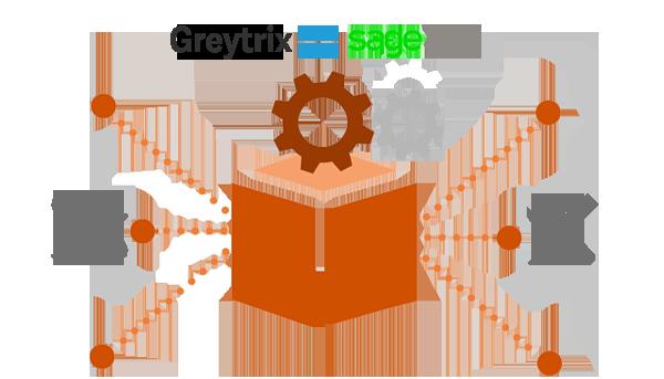 sage 300 programming