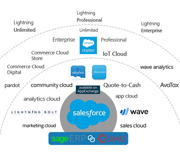 sage and salesforce integration