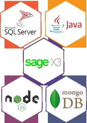 Sage X3 ERP Software Development