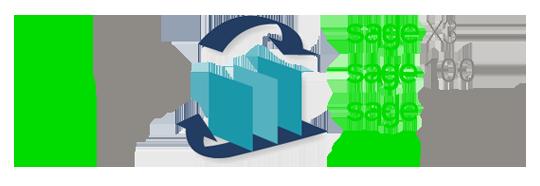 sage crm integration versions